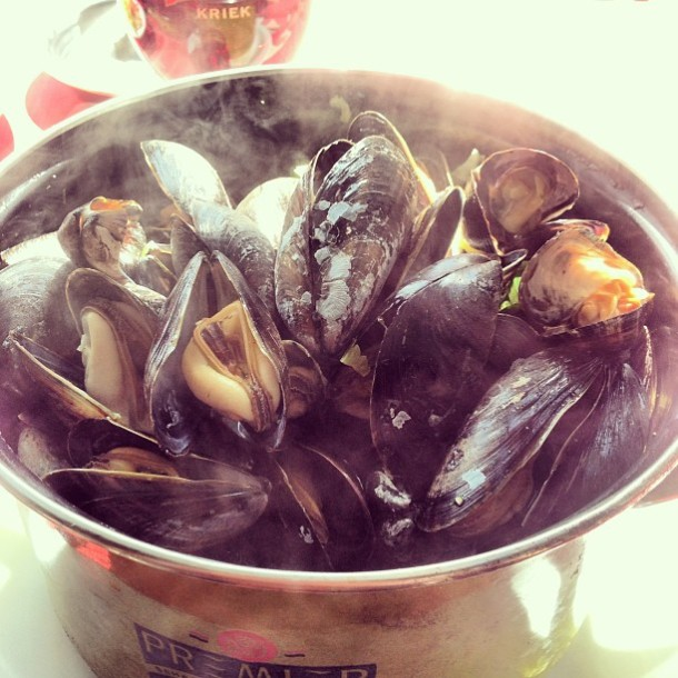 Mussels in white wine.