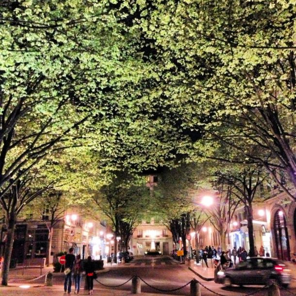 One of my favorite shots of Lyon at night. The trees with the lights gave it a dramatic effect, yes?