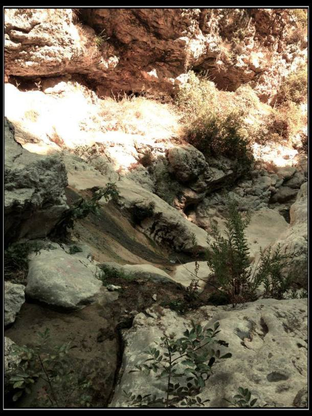 What's left of the stream, dry rocks.